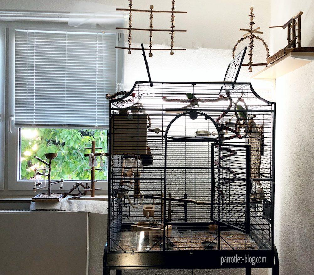 parrotlet cage